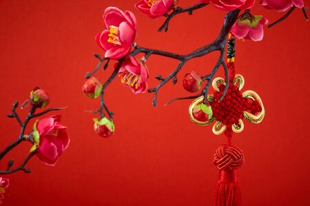 Decoration Red Sakura Tree Branches Traditional chinese knot. Chinese 2020 New Year Asian Lantern Flowers on red background. Place for your Text banner. Archivio Fotografico - 134344486