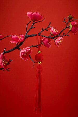 Decoration Red Sakura Tree Branches Traditional chinese knot. Chinese 2020 New Year Asian Lantern Flowers on red background. Place for your Text banner. Archivio Fotografico - 134344498