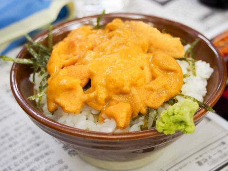 urchin: Japanese rice bowl with raw urchin eggs