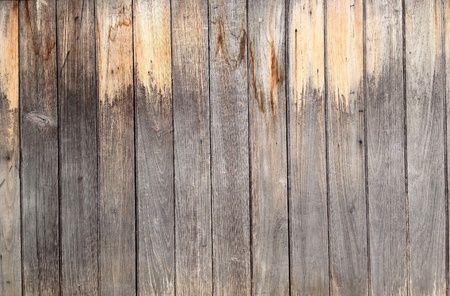 backdrop: wooden background texture