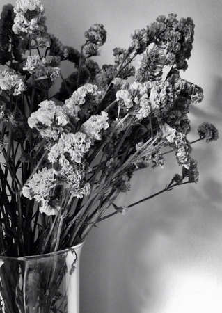 valentinas: black and white bouquet of flowers in transparent vase