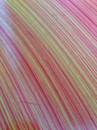 print: Abstract colorful Background