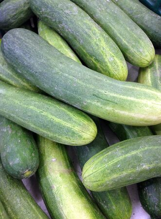 fresh green cucumber collection in market