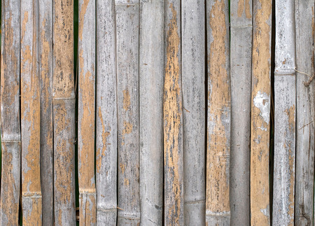 Background pattern of a bamboo pipes palisade Stock Photo