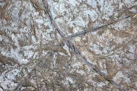 Natural Rock Paving Tiles