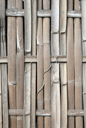 Background with bamboo in brown and beige natural colors