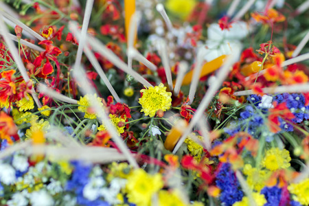 Colorful flowers with incense Stock Photo