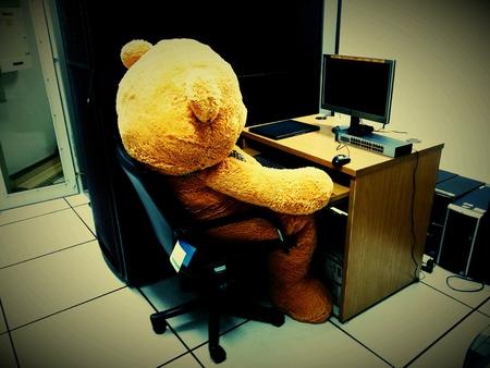 Big bear doll is computer admin