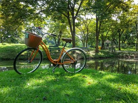 Bicycle in park HDR version. Photo at Bangkok Thailand.
