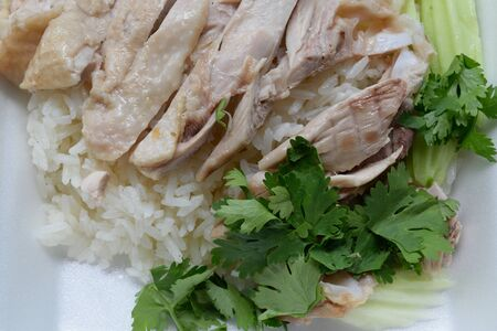 repast: Steamed chicken with rice Stock Photo