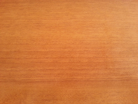 wood texture: Wood texture background