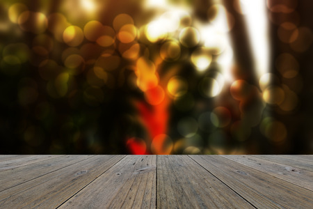 Wood terrace and Abstract blurred nature background. Bird of paradise flower and gardan background with sunlight photo