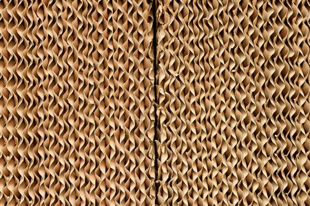 cardboard texture: Cardboard paper texture background natural color