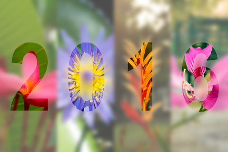 Happy New Year 2016 in Flower Theme, Naturally beautiful flowers in the garden Stok Fotoğraf - 45776022