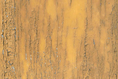 Wood texture background surface natural color. Stock Photo