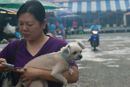 phra nakhon si ayutthaya: Ayutthaya, Thailand - August 12, 2015 : Unidentified Thai woman and her pet shopping a seafood at Central Market of Agriculture on Phra Nakhon Si Ayutthaya, Thailand. Editorial