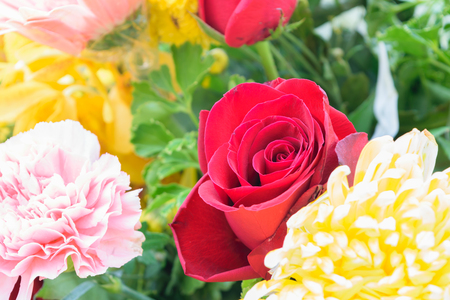 Beautiful rose flower in a bouquet, Naturally beautiful flowers in the garden Stock Photo