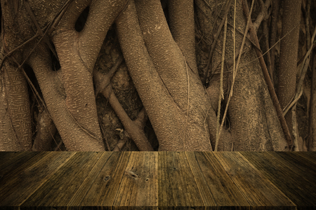 natural process: Wood texture surface natural color use for background , process in vintage style with Wood terrace