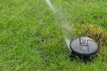 Watering sprinkler on grass field at the park