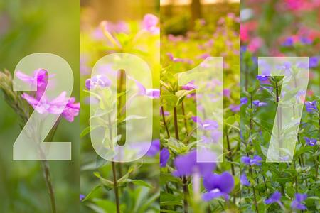 花のテーマ、庭の自然に美しい花で幸せな新年 2017