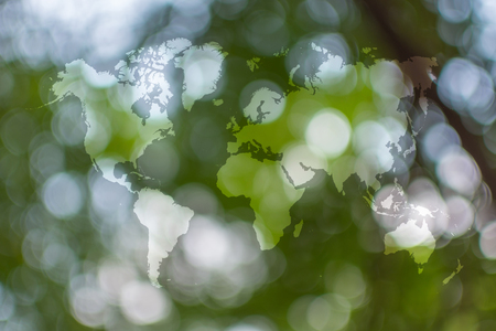 Abstract Bokeh Sunlight And Tree Background Of Nature In Green