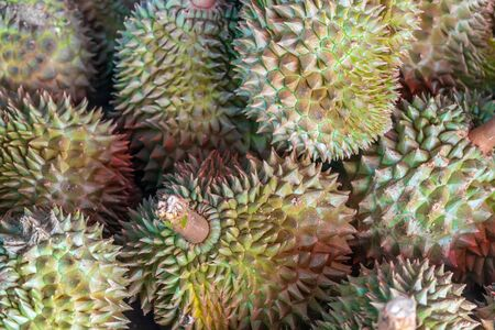 Durian king of fruit so sweet and tasty in Thailand Stock Photo