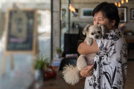 Asian woman and dog so cute mixed breed with Shih-Tzu, Pomeranian and Poodle in coffee shop cafe Stock fotó