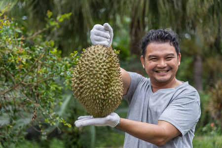 Asian man farmer holding the durian king of fruit in Thailand