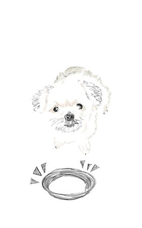 Sketch and drawn with painted simple digital graphic illustration design of The cute dog waiting for eat a food and empty bowl with copy space for your text