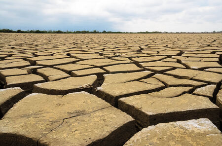 barrenness: drought land