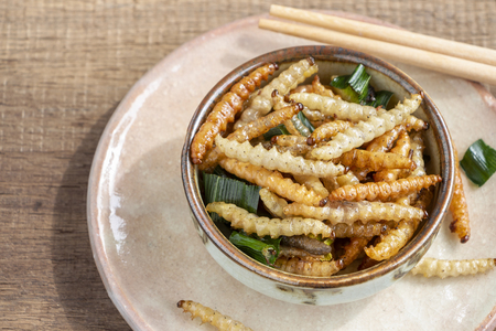 Bamboo edible worm insects crispy or Bamboo Caterpillar in a ceramic bowl on a wood table. The concept of protein food sources from insects. It is a good source of protein, vitamin, and fiber. 스톡 콘텐츠