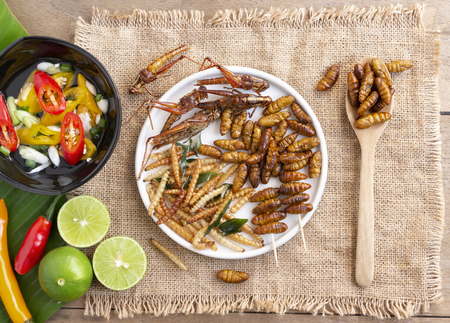 Mixed crispy worm and insects in a white ceramic plate with a wooden spoon on a wood table. The concept of protein food sources from insects. It is a good source of protein, vitamin, and fiber. 스톡 콘텐츠