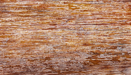 Genuine wood board texture background. Copy space for your text or image.