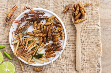 Mixed of crispy worm and insects in a ceramic plate with chopsticks on a wood table. The concept of protein food sources from insects. It is a good source of protein, vitamin, and fiber.