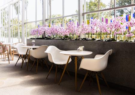 Diseño de interiores de cafetería con sillas blancas y violeta de flor.