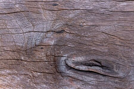 Genuine wood board texture background. Photos closer to seeing a clear pattern of wood. 版權商用圖片