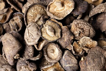 Shiitake mushrooms or lentinus edodes  foods that are healthy,  cultivated in Japan and China. 스톡 콘텐츠
