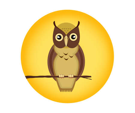 An owl is a nocturnal bird of prey with large forward-facing eyes surrounded by facial disks, a hooked beak. Vecteurs