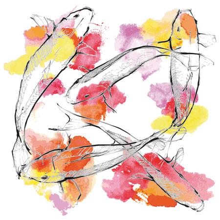 Illustration of hand drawing Koi carps on paint ground