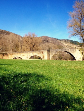 Old stone bridge in a countryside of france Stockfoto
