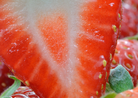 Detailed surface shot of a fresh strawberry