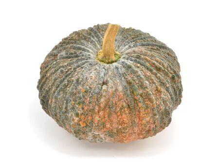 Fresh pumpkin on white background Stock Photo