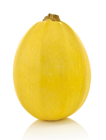 Spaghetti squash on white background Stock Photo