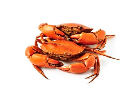 Gekookte krabben op een witte achtergrond Stockfoto