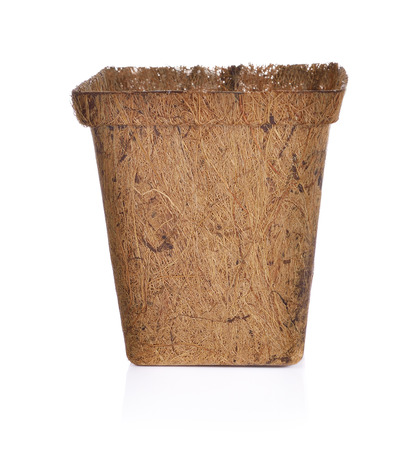 biodegradable: Biodegradable plant pot made from coconut husk on white background