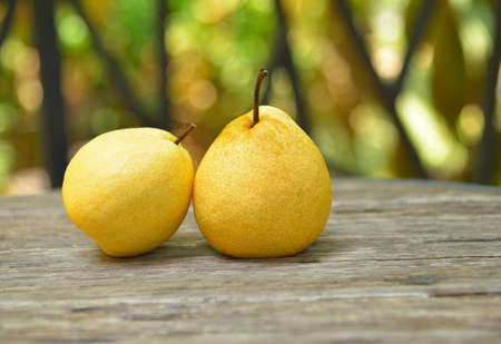 Sweet Chinese pear on wooden table Stock Photo