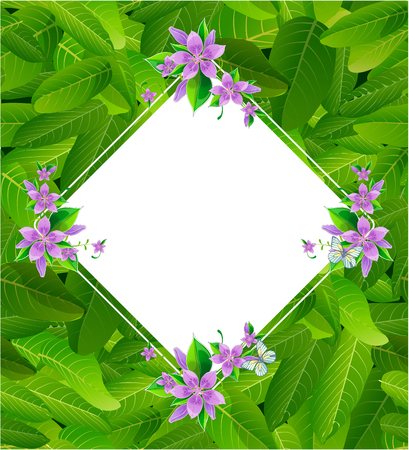leaf greens summer backgrounds vectors