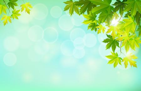 オレンジと黄色のカエデの葉のコレクションとテキストのための空または空白のスペースと秋の季節の秋の背景。ベクトルイラスト。  イラスト・ベクター素材