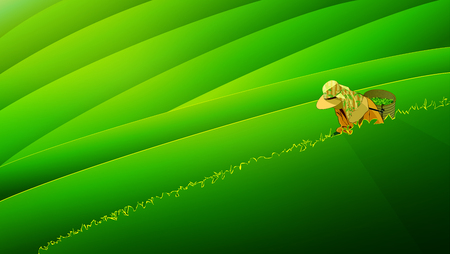 People keep tea leaves green season background. Vectors illustration.