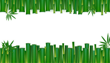 Green bamboo tropical panorama backgrounds vectors  illustration.  イラスト・ベクター素材
